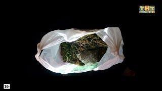 Жительница Белорецка обвиняется в незаконном хранении марихуаны