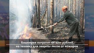 UTV. Новости севера Башкирии за 1 июля (Бирск, Мишкино, Бураево)