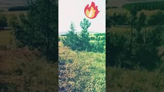 Шикарная поездка с мужем байкером✔️/природа Башкортостана /родина Башкирия