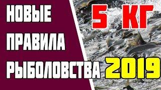 Новые правила рыболовства 2019. Закон о рыбалке 2019. Норма Вылова - 5 кг