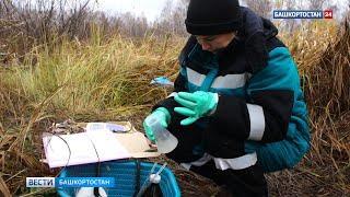 Анализ воды на реках Изяк и Казмышла не выявил превышений вредных веществ