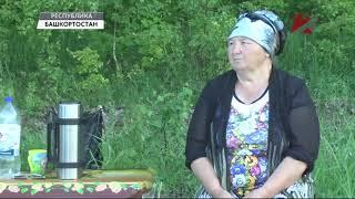 Жители против строительства свинокомплекса. Башкирия