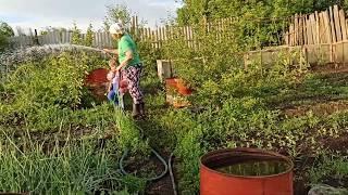 Сады г. Ишимбай. Поливаем сад. Отвратительное поведение Руслана