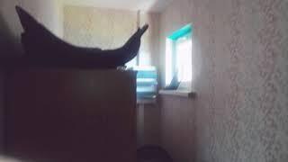 Продажа дома в д. Вавилово Уфимского района РБ