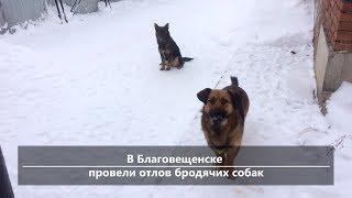 UTV. Новости центра Башкирии за 17 января