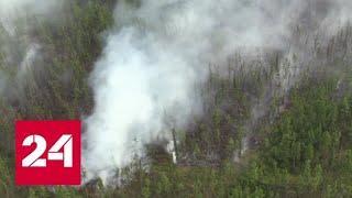 Первые два самолета Ил-76 вылетели из аэропорта Красноярска для тушения огня - Россия 24