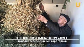 UTV. Новости центра Башкирии за 20 сентября