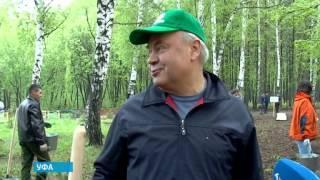 В уфимском Парке лесоводов в рамках Всероссийской акции посадили 200 хвойных деревьев