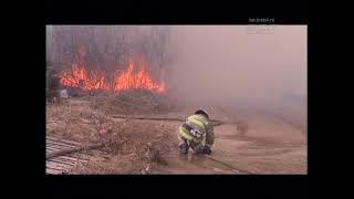 Шесть пожарных расчётов боролись с огнём на дачах под ЛЭП
