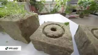 Субстраты из каменной ваты SPELAND