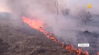 Новости UTV. Пал сухой травы может привести к пожару