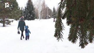 Омск: Час новостей от 1 февраля 2021 года (11:00). Новости