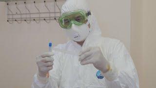 UTV. Жители Башкирии, побывавшие за границей за последние 30 дней, должны провериться на коронавирус