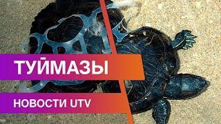 Новости Туймазинского района 28.10.2020
