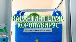 ???? Коронавирус в Пермском крае: последние новости 1 апреля