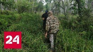 Пенсионерка сутки простояла в трясине, рыком отпугивая медведя - Россия 24