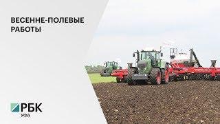 В РБ 15 районов приступили к севу ранних яровых культур, работы проведены на 7,3 тыс. га