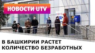 UTV. В Башкирии растет количество безработных и штрафов за нарушение режима самоизоляции