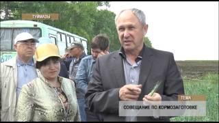 В Туймазинском районе прошло совещание по кормозаготовке