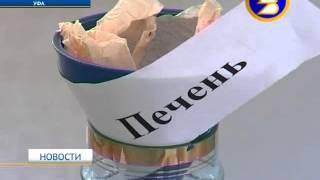 Трезвость в Республике Башкортостан