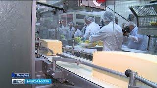 В Башкортостане возведут новый завод по производству мягких сыров