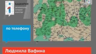 Ближайшие три дня погода в Башкирии будет непредск