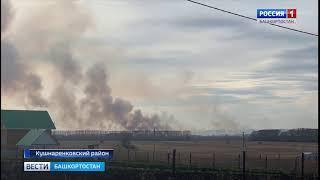 В Башкирии вновь загорелась сухая трава