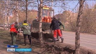 Газоны на уфимских улицах очистят от грязи и засеют травой