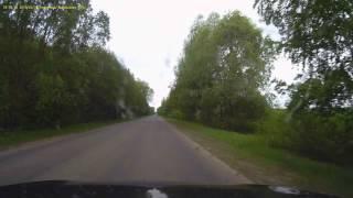 Лось выбежал, Нефтекамск-Агидель, перекресток на татарскую переправу. 21.05.16г