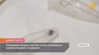 Новости UTV. В Башкирии медики советуют начать прививаться против клещевого энцефалита.