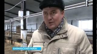 """Еще одна ферма в Баймакском районе, участвующая в программе """"500 ферм"""", сдана в эксплуатацию"""