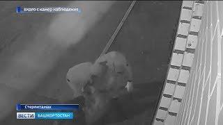 Жестоко избивших охранника церкви в Башкирии задержала полиция