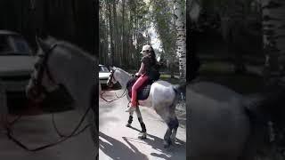 Александра Виценко катание на лошадях