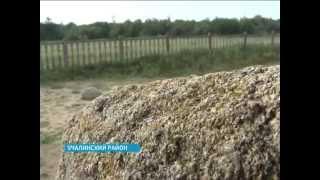 В Учалинском районе возле села Ахуново вновь наблюдались аномальные явления