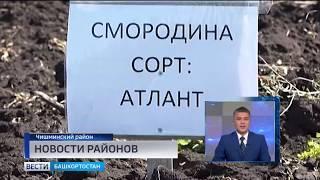 Новости районов 14.06.19
