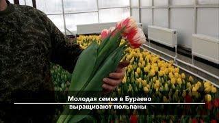 UTV. Новости севера Башкирии за 5 марта (Бирск, Мишкино, Бураево)