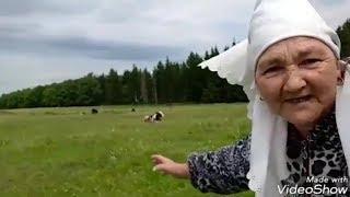 Бабушка и хэштеги