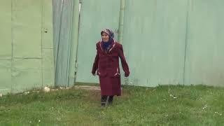 Әнинең туган коне на татарском языке смотреть всем