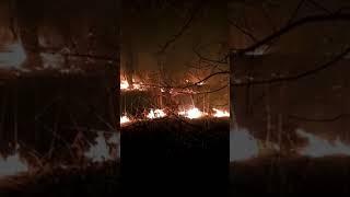 Пожар в Уфимском районе 2 мая 2019