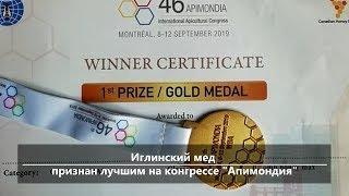 UTV. Новости центра Башкирии за 12 сентября