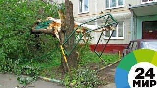 Сильный ветер снес крышу школы в Казахстане - МИР 24