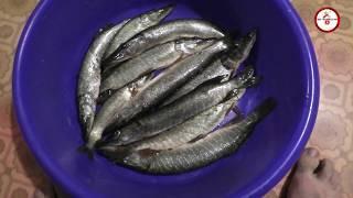 Рыбалка на спиннинг - 2