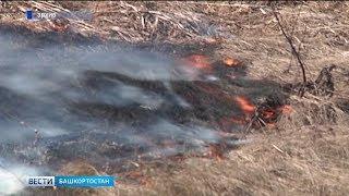 Сразу несколько случаев горения сухой травы зафиксировано в Башкирии