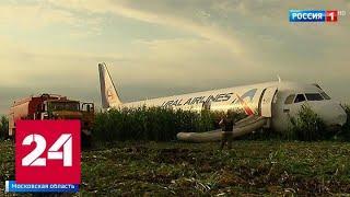 Аварийный Airbus остается на кукурузном поле - Россия 24