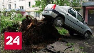 """""""Погода 24"""": ветер доставит Москве большие неприятности, но на выходных погода улучшится - Россия 24"""