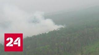 В зоне задымления от лесных пожаров в России находятся более 800 населенных пунктов - Россия 24