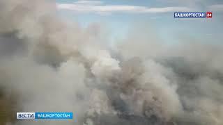 В Башкирии горело несколько гектаров леса природного парка «Иремель» - ВИДЕО
