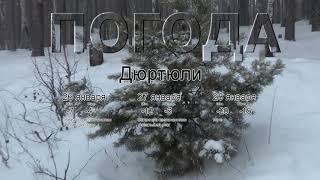 Погода в Дюртюлях сегодня 26 января 2020. На завтра, неделю