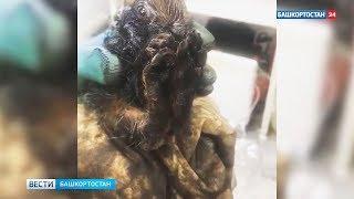 Зайчата едва не утонули в луже нефти в Башкирии