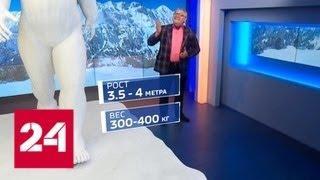 В Гималаях напали на след йети. Какого размера может быть чудовище? - Россия 24